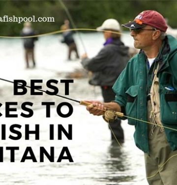 best-places-to-fly-fish-in-montana